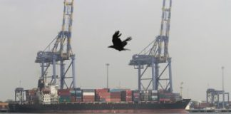 A crow flies past a container ship docked at a port in Vallarpadam in the southern Indian city of Kochi (Photo: Reuters/Sivaram V).