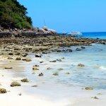 Koh Larn Beach 2
