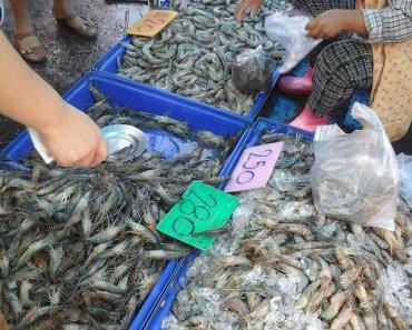 Thai Seafood Ang Sila