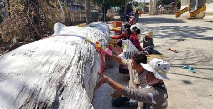 Thai People Tree Dwelling Spirits