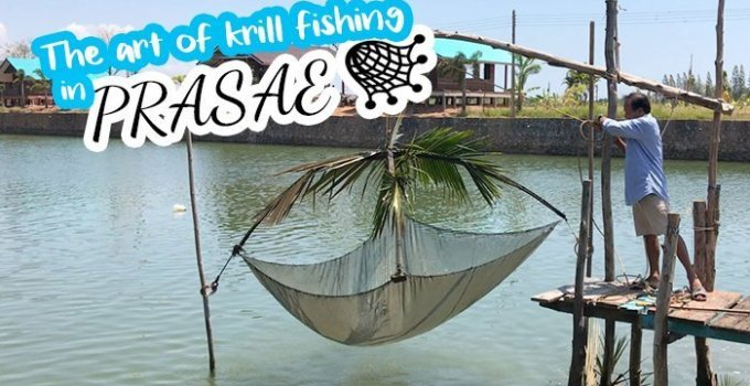Prasae Rayong Thailand krill fishing