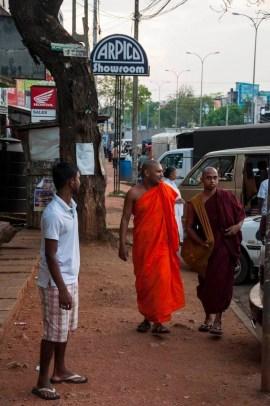 moines ville dambulla - sri lanka