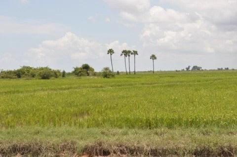 siem reap vers village kompong phluk