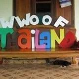 logo wwofing thailande