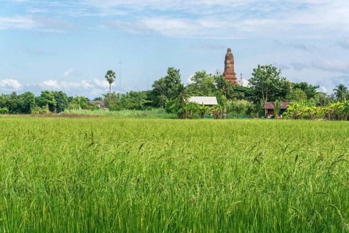 Kamphaeng Phet - parc historique - Thaïlande 48