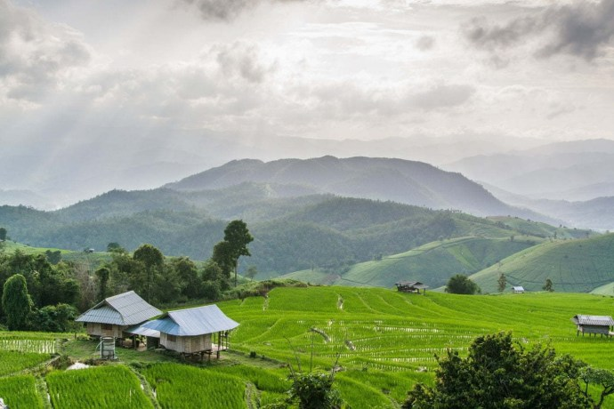 rizières de baan pa pong pieng - chiang mai