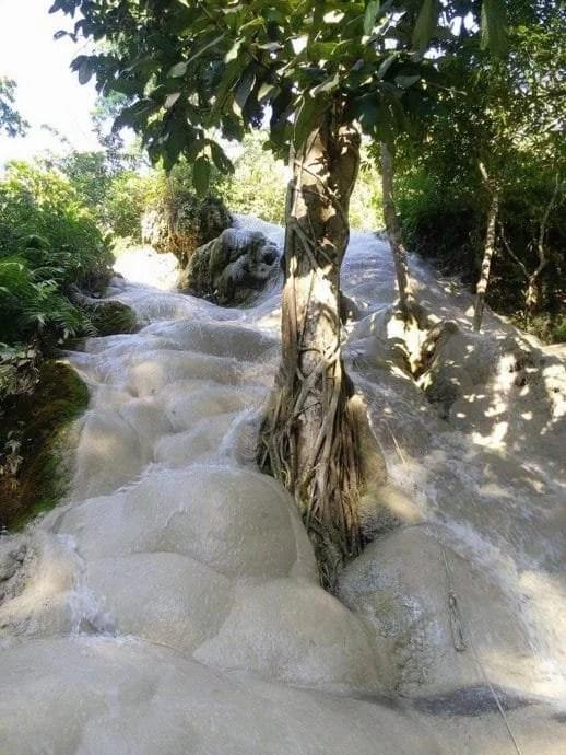 bua thong waterfall - nord chiang mai -thailande