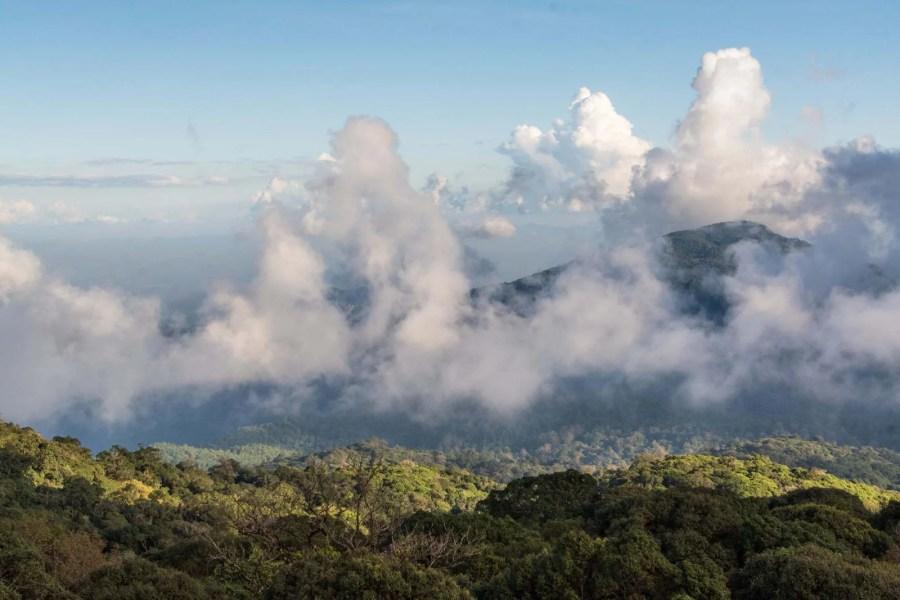 point de vue doi inthanon kew mae pan - chiang mai - thailande