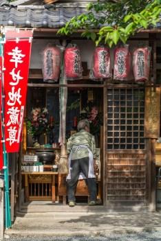 scene de vie long chemin de la philosophie kyoto
