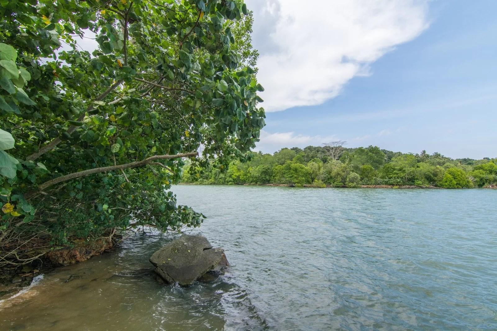 pulau ubin sensory trail singapour