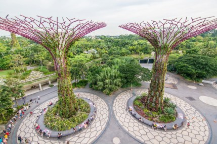 super arbres depuis skyway gardens by the bay singapour