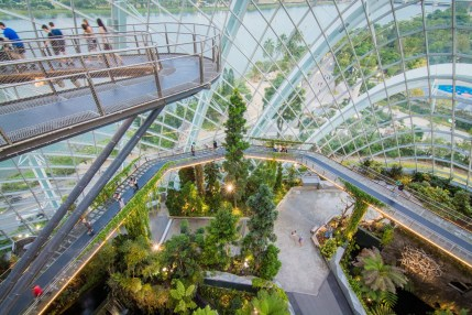 tree top walk cloud forest dome singapour