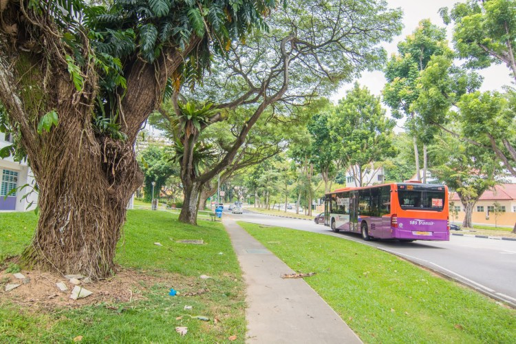 bus sbs transit singapour