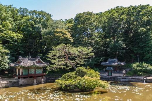 bassin buyongji jardin secret changdeokgung - seoul