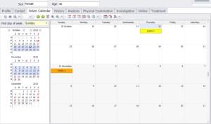 Seizure calendar 3