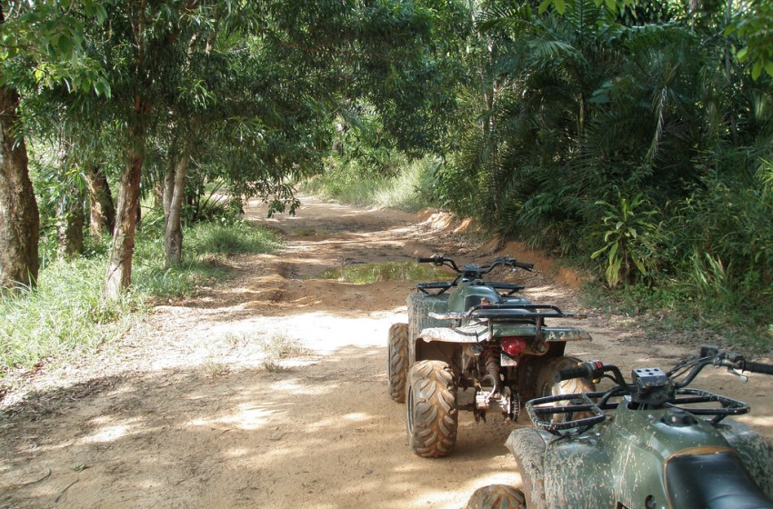 Phuket tourist almost severs tongue in ATV accident