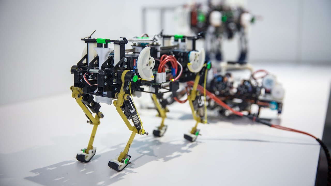 Innovation in Cancer Prevention: Bio-robots Transporting Cordyceps Extract