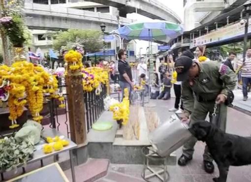 Canine police at Erawan Shrine in Bangkok