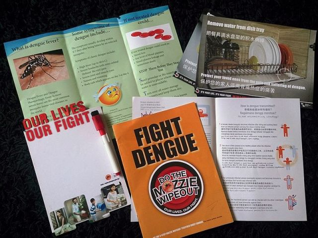 Dengue fever remains a concern this year