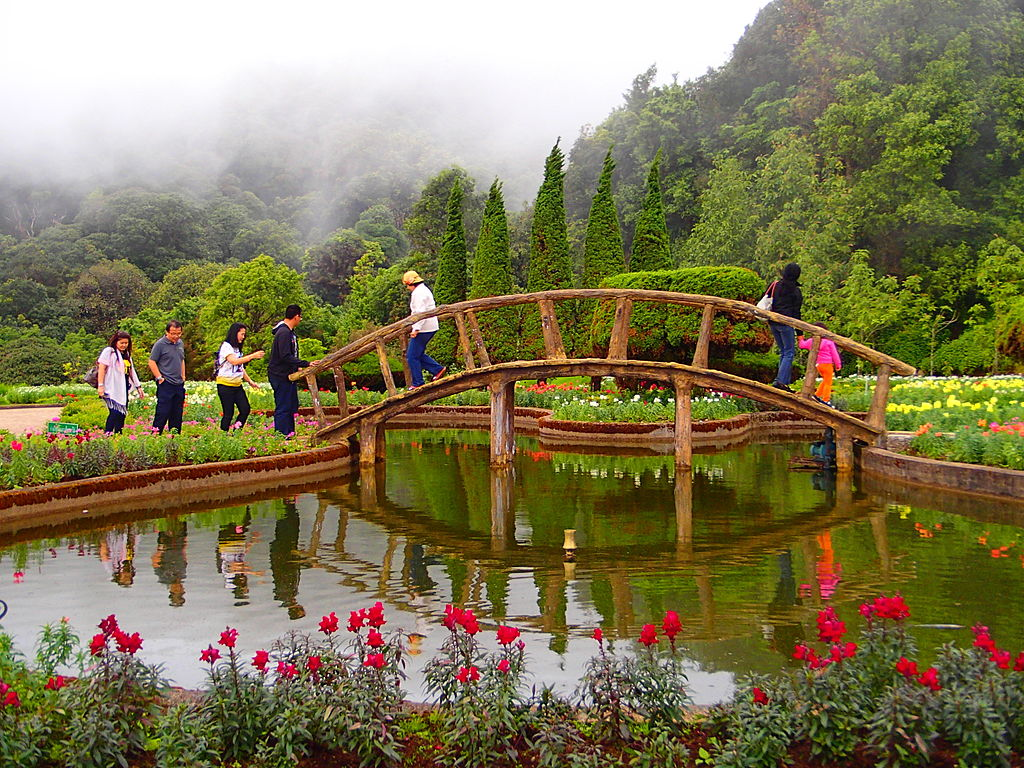 Between the King and Queen Pagodas of Doi Inthanon National Park