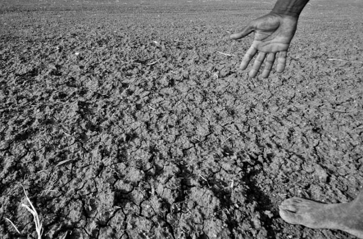 Fields affected by drought