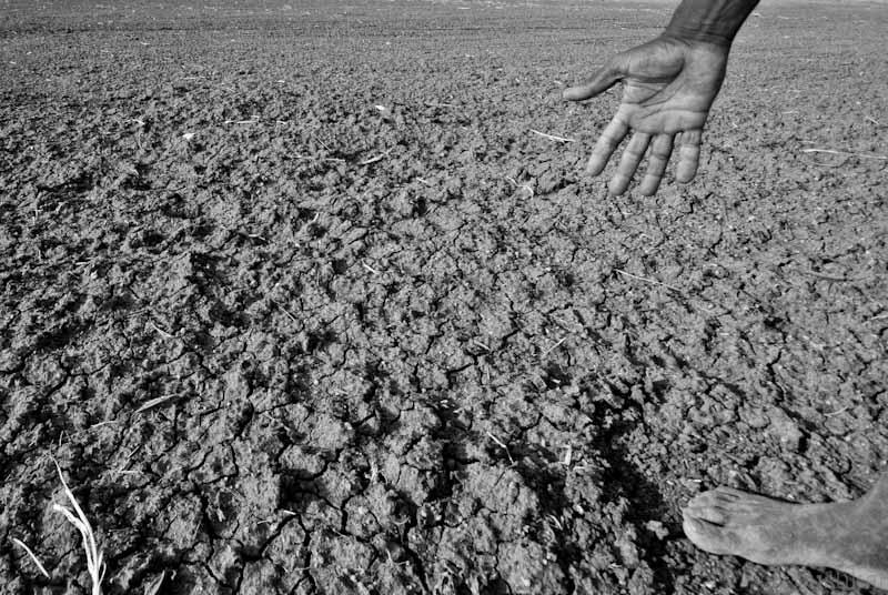 El Niño Takes Its Toll on Southeast Asia
