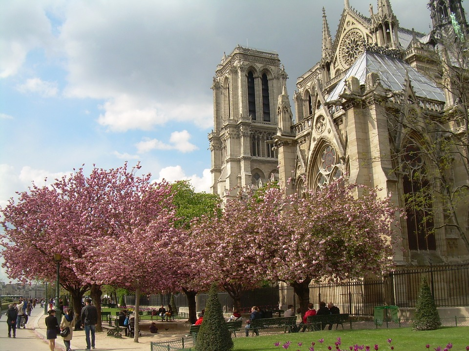 Notre Dame Cathedral in Paris