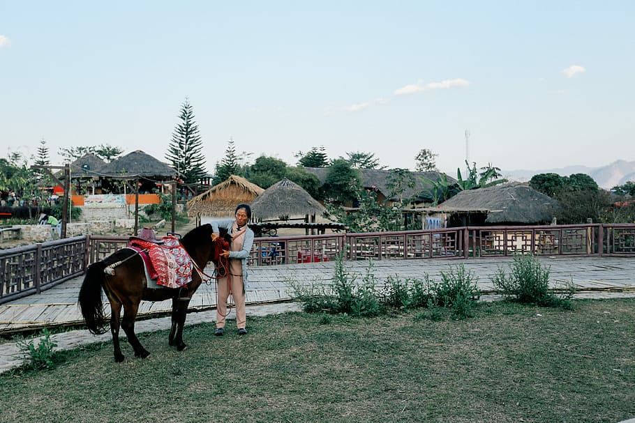 Woman holding a black horse beside a fence in Thailand