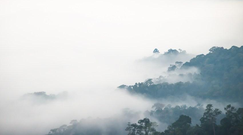 Fires still raging in Kaeng Krachan National Park