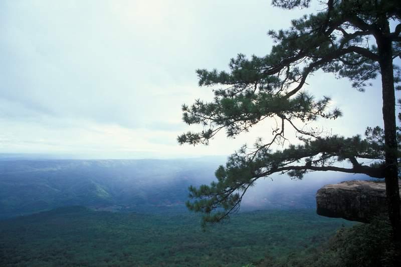 Pha Lom Sak cliff, Loei