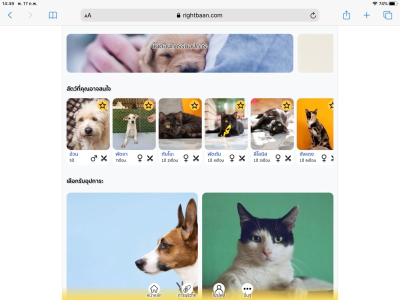 Rightbaan web app screenshot