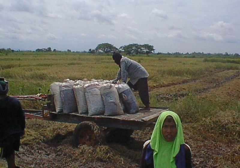 Government expedites help for drought-hit farmers