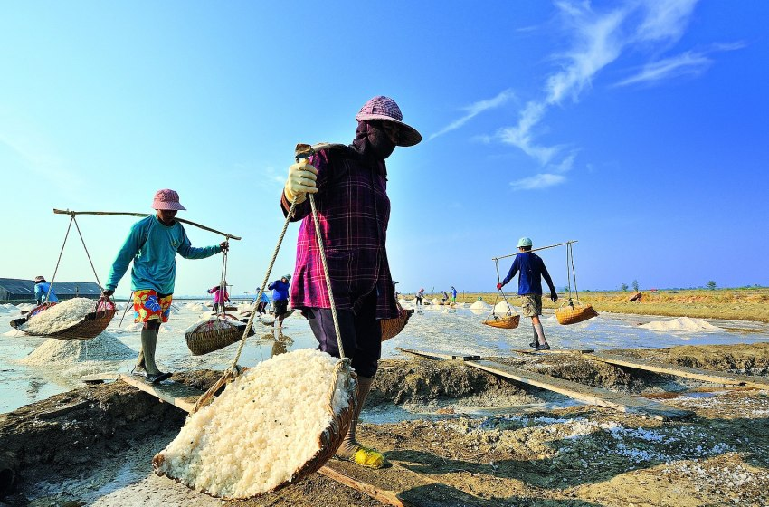 Immigrant workers at salt field in Samut Sakhon