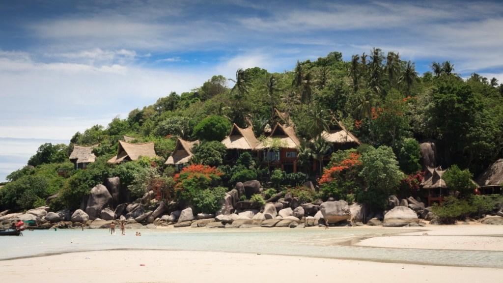 Beach houses in Koh Tao island
