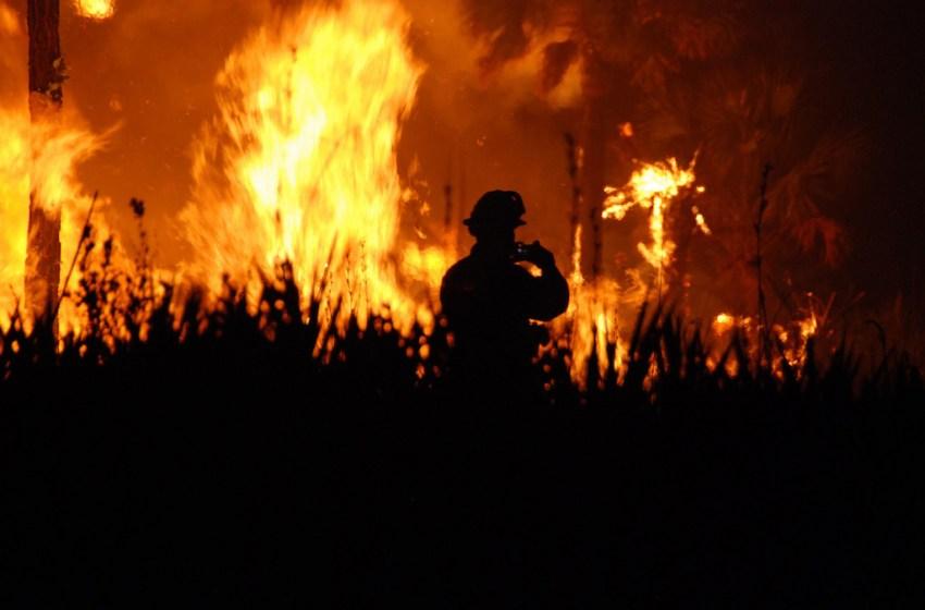 Firefighter and fire blaze