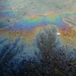Oil spills along the shore