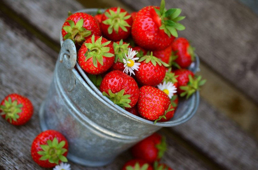 A bucket with strawberries