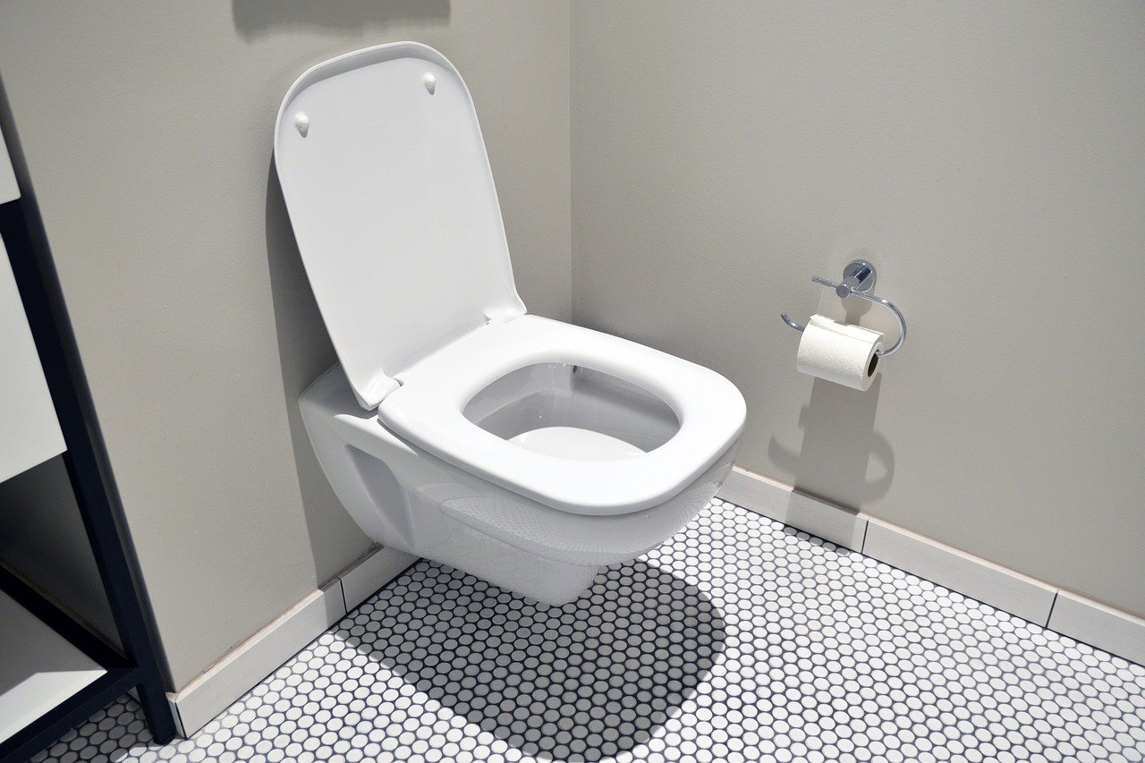 Toilet at South Korean University Turns Poop Into Energy & Virtual Currency