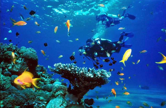 Thailand_snorkeling