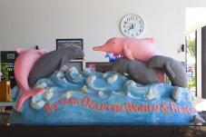 dolphin_world1