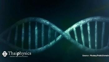 ยีนที่ควบคุมโรคจิตเวชทั้งห้า