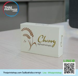 packaging กล่อง 10