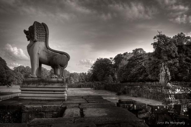 Terasa slonů