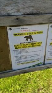 Tofino Bears