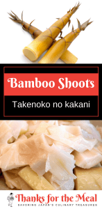 Takenoko no kakani boiled bamboo shoots