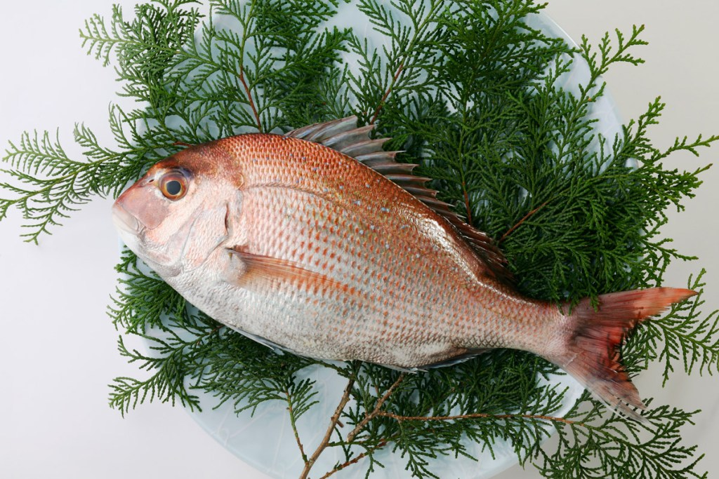 sea bream for Tai Meshi recipe