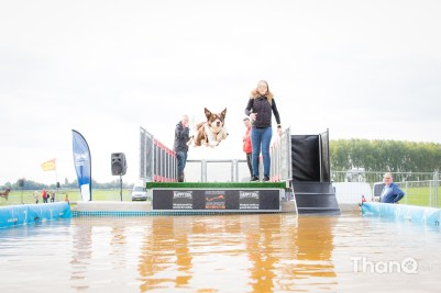 "Happy Dog European Championship ""Big Air"" in Meeuwen"