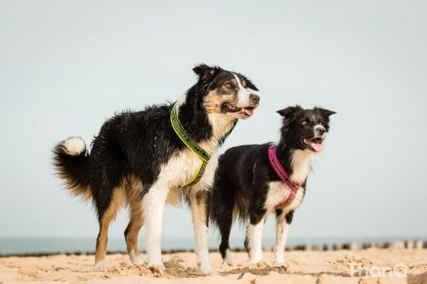 Jindi en Fenna op het strand in Domburg
