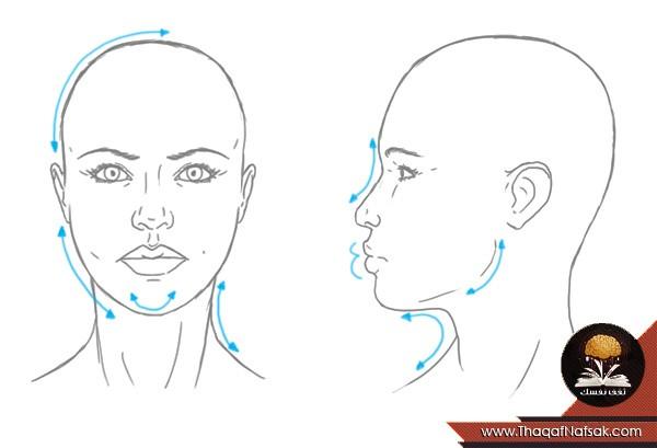 blank ear diagram to label 150 watt hps ballast wiring كيف ترسم وجه المرأة و الرجل بشكل صحيح كالمحترفين