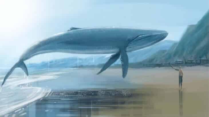تفسير رؤية الحوت في الحلم